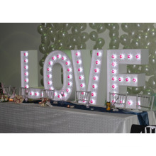Custom Wedding Bulb Letter Sign