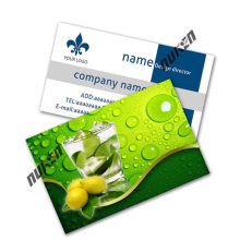 2015 Eco-Friendly 3D Name Card para la promoción