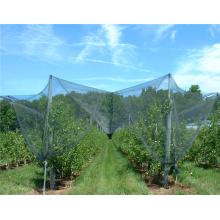 Anti-Hail Net Apple Tree Anti Hail Net