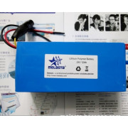 Lithium Ion Polymer Battery Pack: 25.9V 12ah (310.8Wh, 12A rate) with PCM for E-Bike