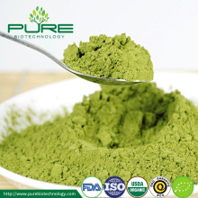 2018 Organic Tea Powder Matcha Powder