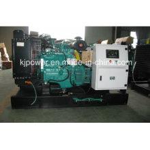 Ensemble de générateur de puissance silencieux Alimenté par Cummins Diesel Engine (25kVA-250kVA)