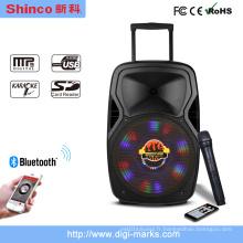 Haut-parleur karaoké Bluetooth rechargeable populaire P151
