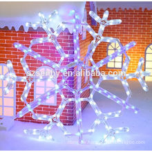 Holiday Living Customized Lighted christmas ornaments