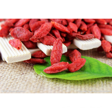 Fruta seca de Berry Super Goji de Ningxia, China