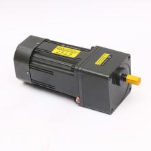 60w 80w 200w 110V 220V AC Gear motor