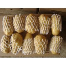 Patata de Holanda
