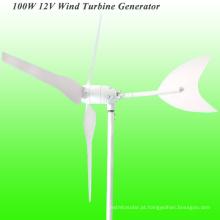 Gerador de vento de 100W, controlador híbrido do vento para a luz de Gardon