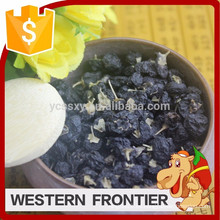 Fuente de suministro de alta calidad secado negro goji estilo baya