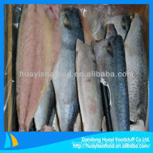 frozen mackerel fillet fish