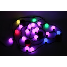 Smart Decorative Lighting Holiday Lights