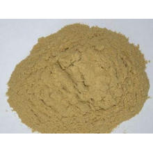 High Quality Cheap Price Amino Acid in Agriculture