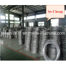 Steel Wire, Oil Temper Wire, Stainless Steel Wire Factory