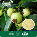 High quality Mangosteen Extract