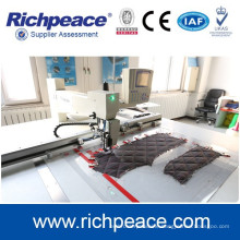 Richpeace Best Brand Dual Color Automatic Sewing Machine for Jeans, hat, glove
