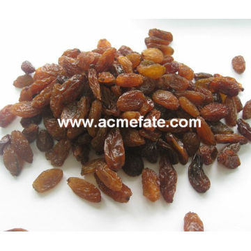 best price green raisin from China