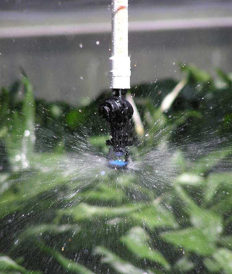 Irrigation Micro Sprayer for greenhouse irrigation system
