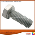Hot Dipper Galvanized Steel Hex Bolts HDG