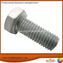 Fast Delivery for Hex Bolts Hot Dipper Galvanized Steel Hex Bolts HDG supply to Montenegro Importers