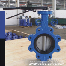 Lug Type (LT) Double-Offset/Triple-Eccentric Iron & Steel Butterfly Valve