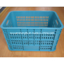 Plastic Container; Beer Boxes; Fruit Boxes; Turnover Boxes