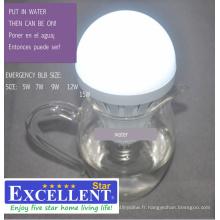 Ampoule LED d'urgence