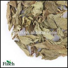 FT-013 Thé de fines herbes parfumé de feuille de menthe poivrée séchée de menthe poivrée