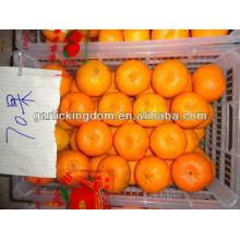 2012 gros mandarin 70mm