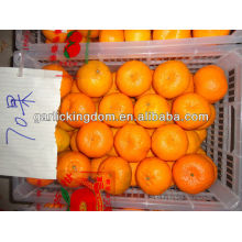 2012 big mandarin 70mm