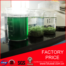The Biggest Factory Produce Water Decoloring Agent in The World