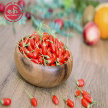 Goji berry / Wolfberry / New goji berry organik