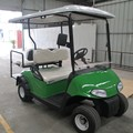 2 Seater Gas Golf Cart