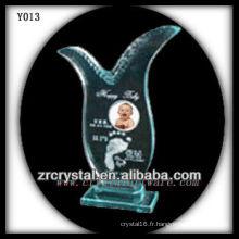 Impression photo couleur cristal Y013