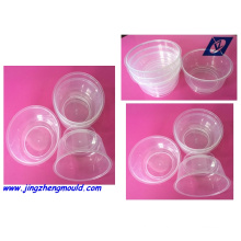 Plastic Injection Thin Thickness Mould (JZ-P-D-01-024_B)