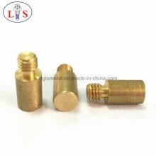 Fastener/ Customized Screw/Special Screw /Screw