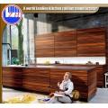 Customized Woodgrain MDF Cabinet Door (ZHUV)