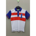 Boy's 100% Cotton Knitted Panel Polo with Small Embroider
