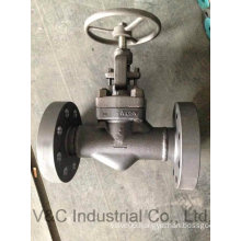 ANSI Flanged Stainless Steel Globe Valve with Operation