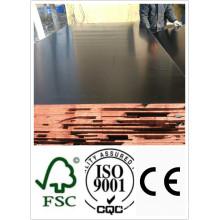 Contrachapado con película resistente al agua WBP Glue Poplar Core