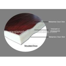 Door skins/ Formed door skins