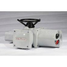 Electric Linear Valve Actuator