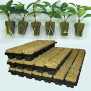 Agriculture Cheap Rockwool Cubes Aquaponic System Hydroponic Rock Wool