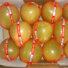 Hot Sale Chinese Pinghe Fresh Honey Pomelo