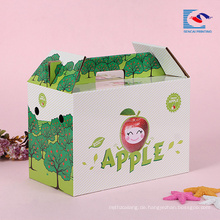 Gewohnheit besitzen Logo Fruchtapfel-Verpackungskartonkasten mit Griff