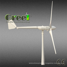 Turbina eólica horizontal da linha central 2kw do chinês para a venda