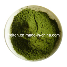 Water-Soluble Barley Grass Juice Powder