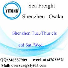 Shenzhen Port LCL củng cố đến Osaka
