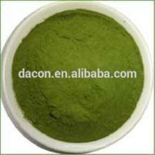 Gardenia vert