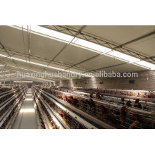china best sale automatic chicken layer cage for sale in philippines