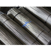 Galvanized Straight Cut Iron Wire (TS-E24)